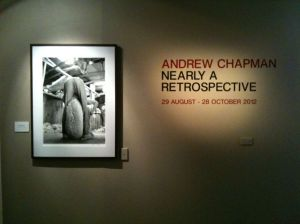 """Andrew Chapman: Nearly A Retrospective"""